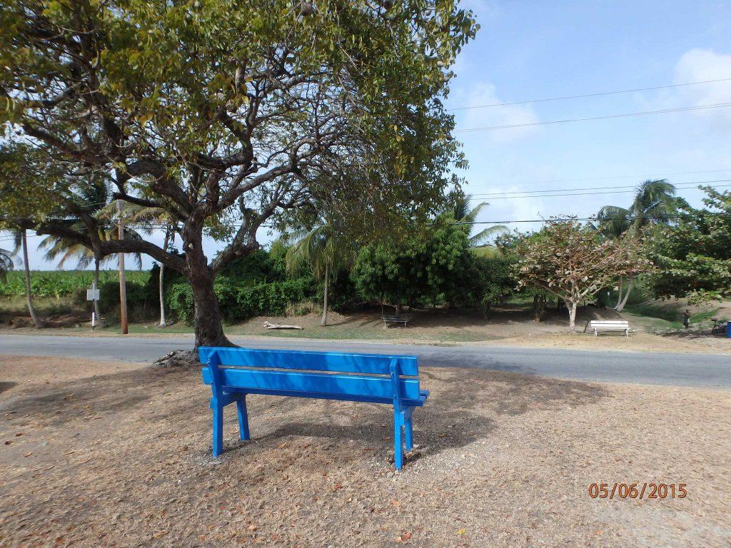 Joe & Betty Burton's memorial bench