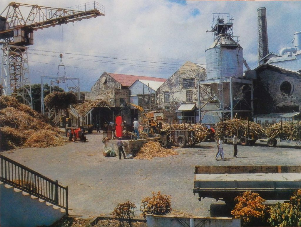 St Philip Barbados sugar factory 1950s