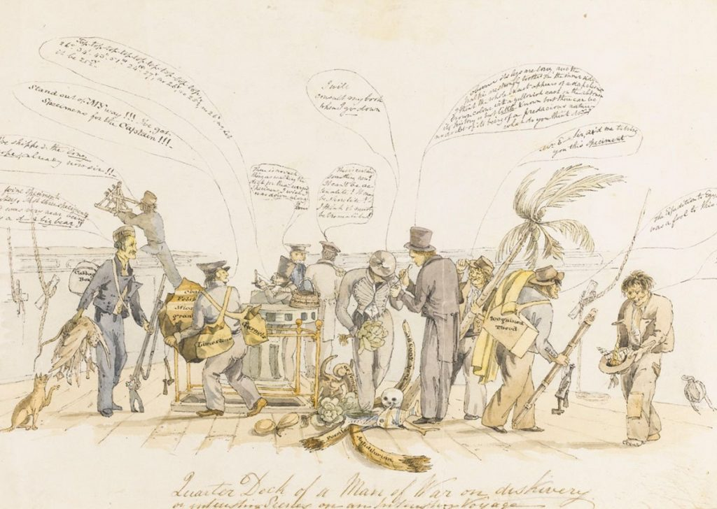 Cartoon of Charles Darwin on HMS Beagle