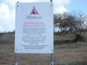 The Matriarch of Newton Plantation
