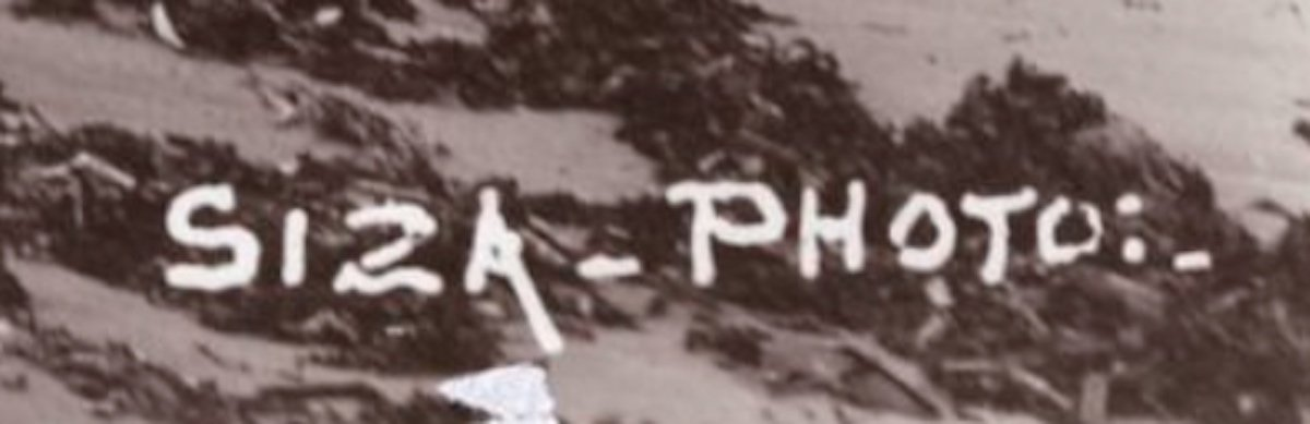 Siza signature
