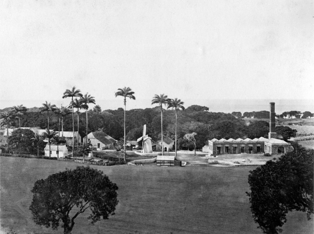 Barbados Sugar Estate with Windmill and Factory